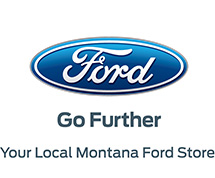 2015 Ford Logo Square