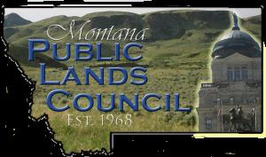 Montana PLC Logo