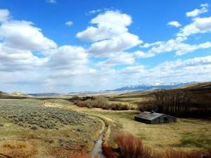 Montana CattleWomen Ranch Run Lennep