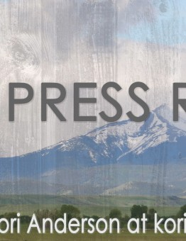Email Press Release Banner 2016