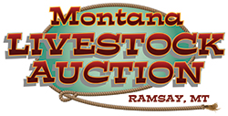 Montana Livestock Auction